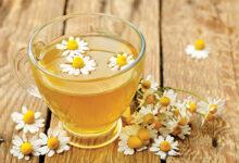 Photo of الفوائد العلاجية لبعض الأعشاب شـــاي الرجيـم.. مخاطر وأضرار استخدامه