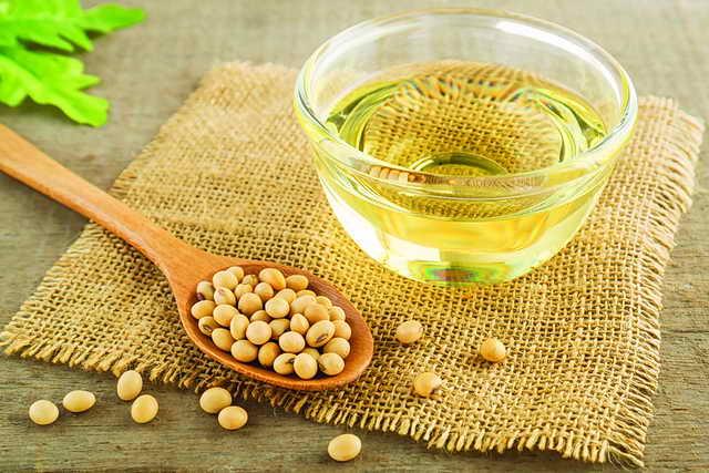 Photo of 7 فوائد لفول الصويا لحياة غذائية صحية للعروسين