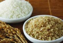 Photo of الفوائد الغذائية والصحية لمجموعة الحبوب (2 – 3)