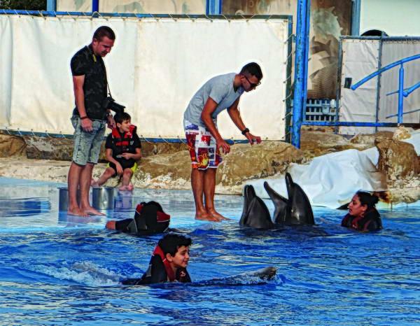 Photo of الحيوانات الأليفة لعلاج أطفال التوحد