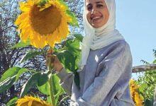 Photo of هاويـة الزراعـة «الزينـة البابـطــيـــــــــــــن»: دوَّار الشمس.. صديقُ حديقتكم