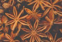 Photo of اليانسون النجمي..فوائده.. من الهرمونات إلى المناعة  -نجم في سماء الصحة